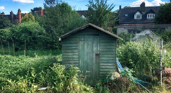 Abris de jardin atypiques : Que dit la loi sur la hauteur