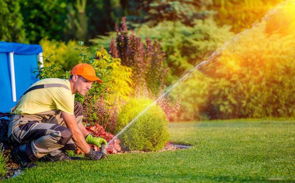 Les champs d'action du jardinier