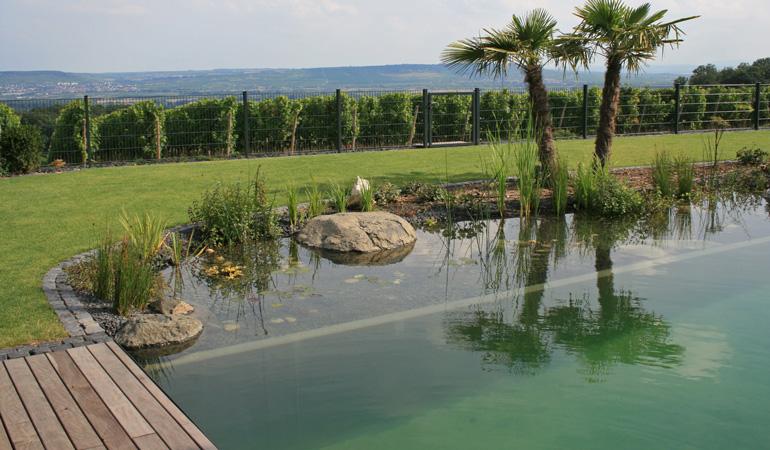 Construction d'une piscine naturelle : Coût de la main-d'œuvre