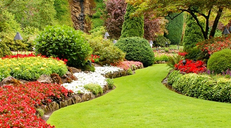 L'entretien d'un jardin