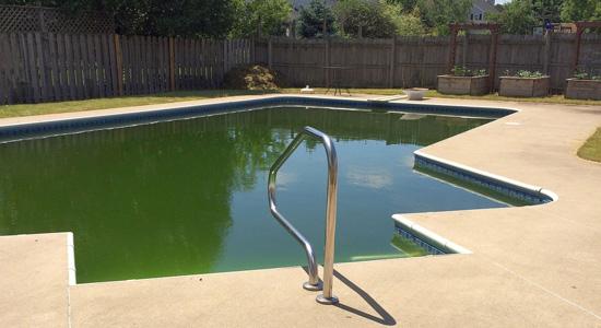 Pourquoi votre piscine devient-elle verte