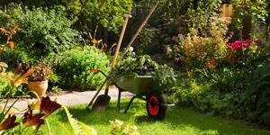 Prix d'un entretien de jardin