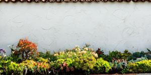Prix d'un mur de clôture