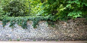 Prix d'un mur en pierre
