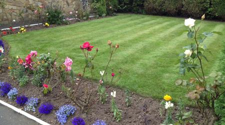 Prix d'un nettoyage d'un jardin