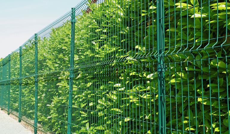 Quel est le prix d'une clôture grillage selon les types