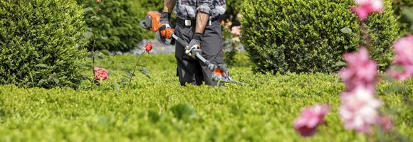 Tarif d'un jardinier