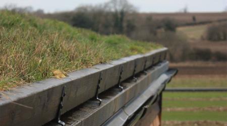 Tarif de pose d'une toiture végétalisée