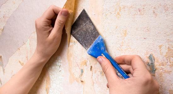 d coller son papier peint nos conseils et astuces prix pose