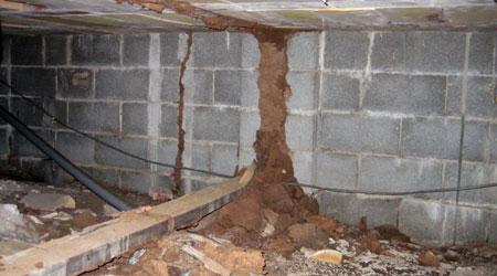 Le traitement termites : une opération onéreuse